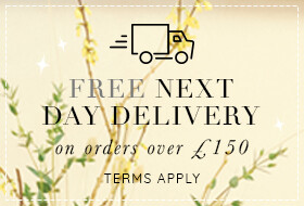 07-04 free next day delivery