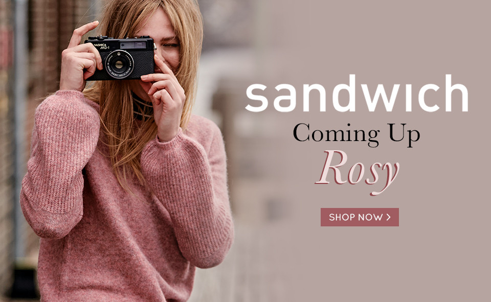 Sandwich 17-10