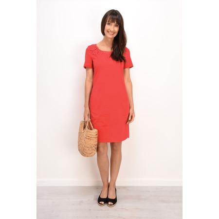 Sandwich Clothing Cotton Lace cutout Dress - Black