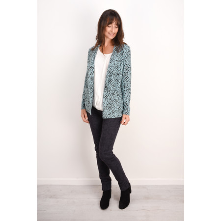 Sandwich Clothing French Terry Cheetah Blazer - Blue