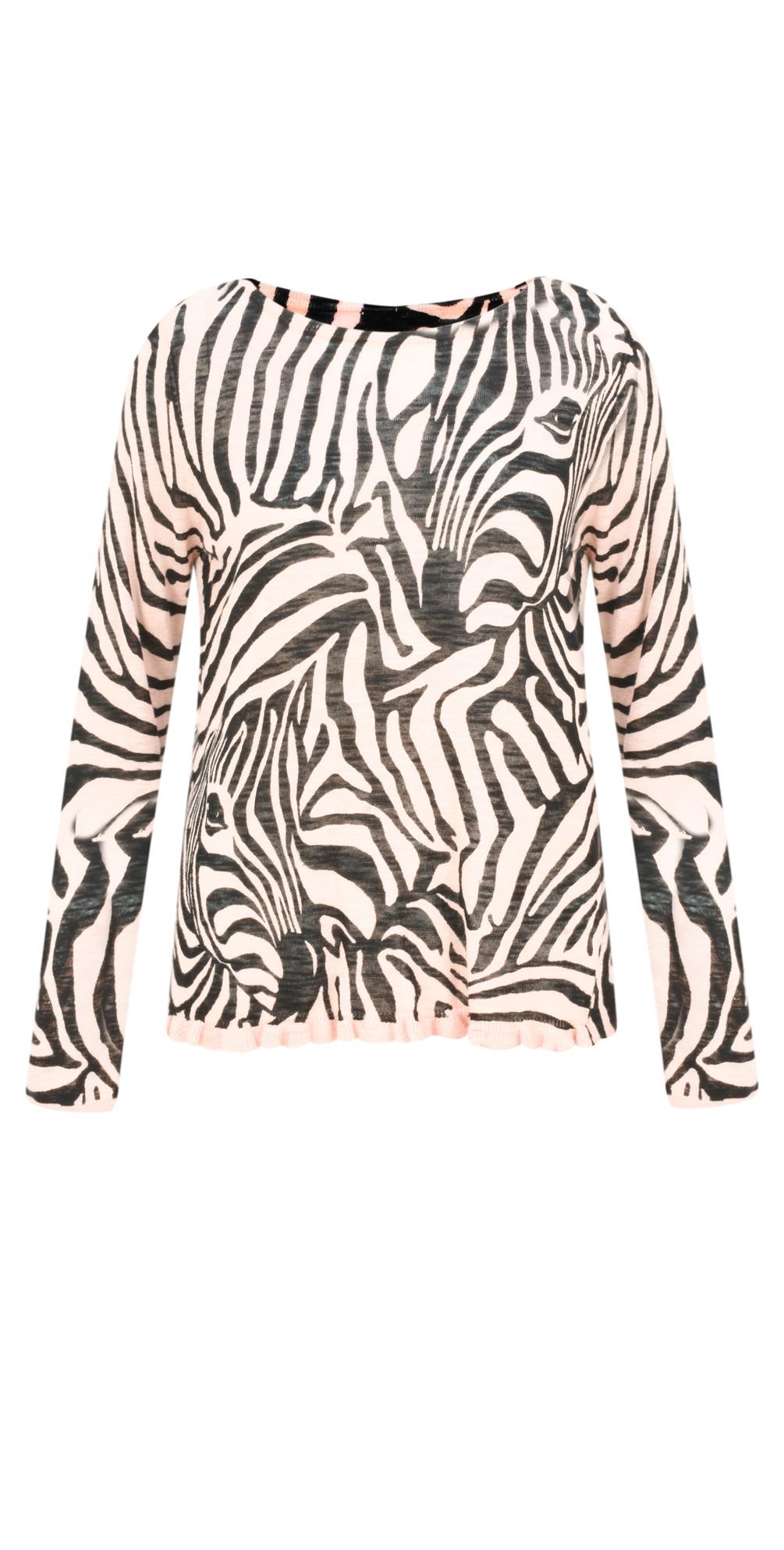 Zebra Jumper main image
