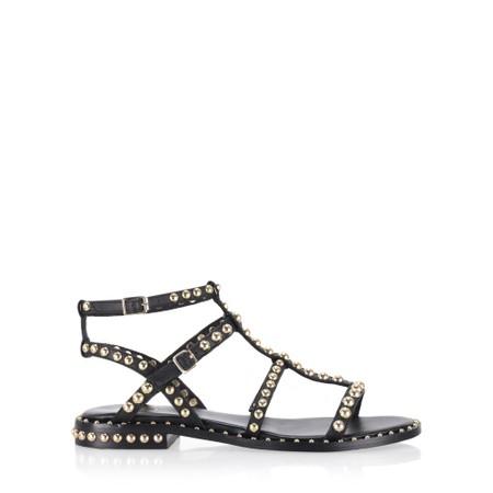 Ash Precious Strappy Stud Sandal  - Black