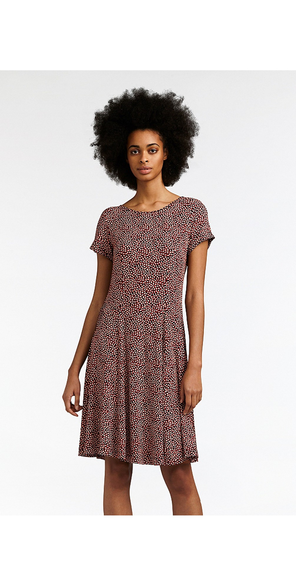 Fit and Flare Dotted Flower Dress main image