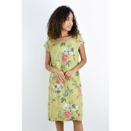 Fenella  Paola Rose Easyfit Cap Sleeve Dress - Green