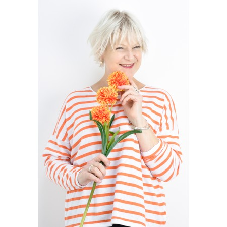 Gemini Label  Ruth Cotton Stripe Top - Orange