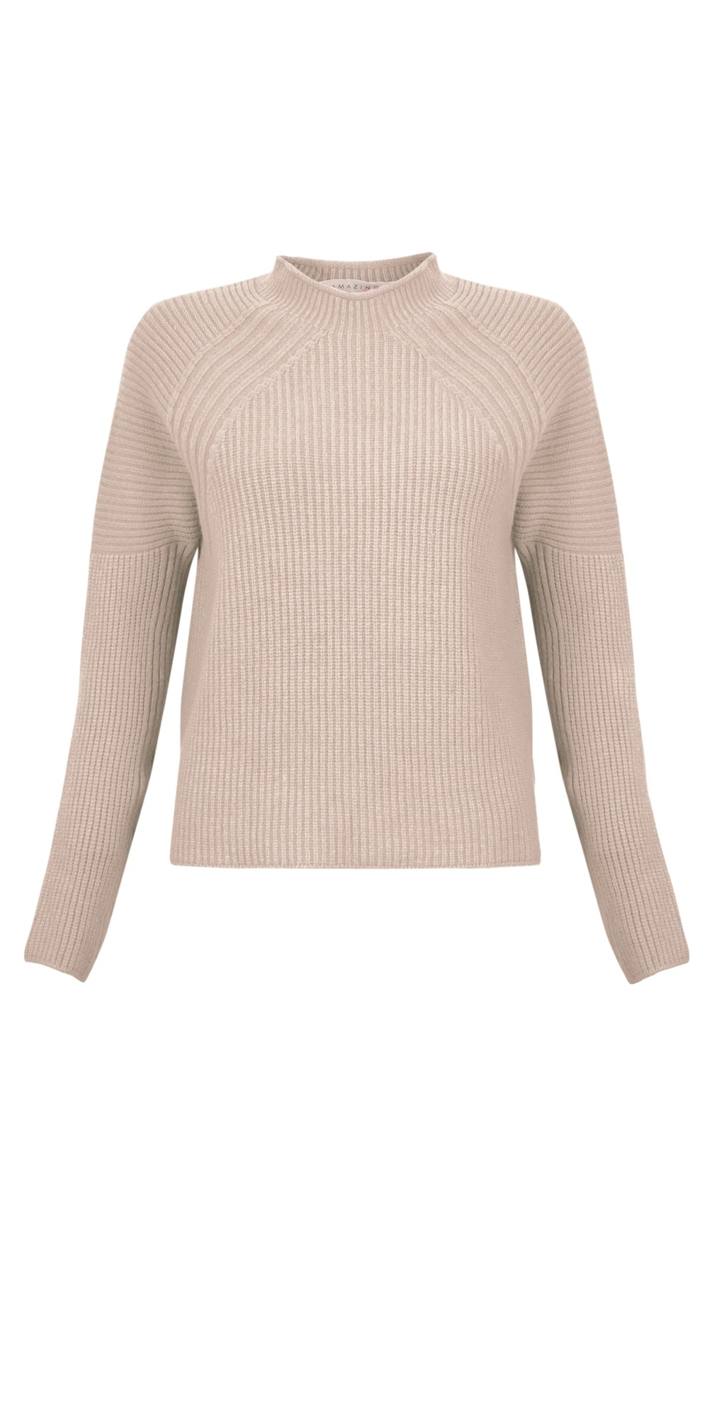 Fran Roll Neck Contrast Rib Knit main image