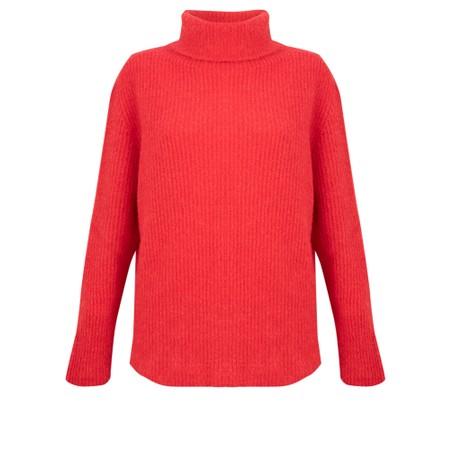 Amazing Woman  Carla E Cosy Knit Ribbed Polo Neck - Red