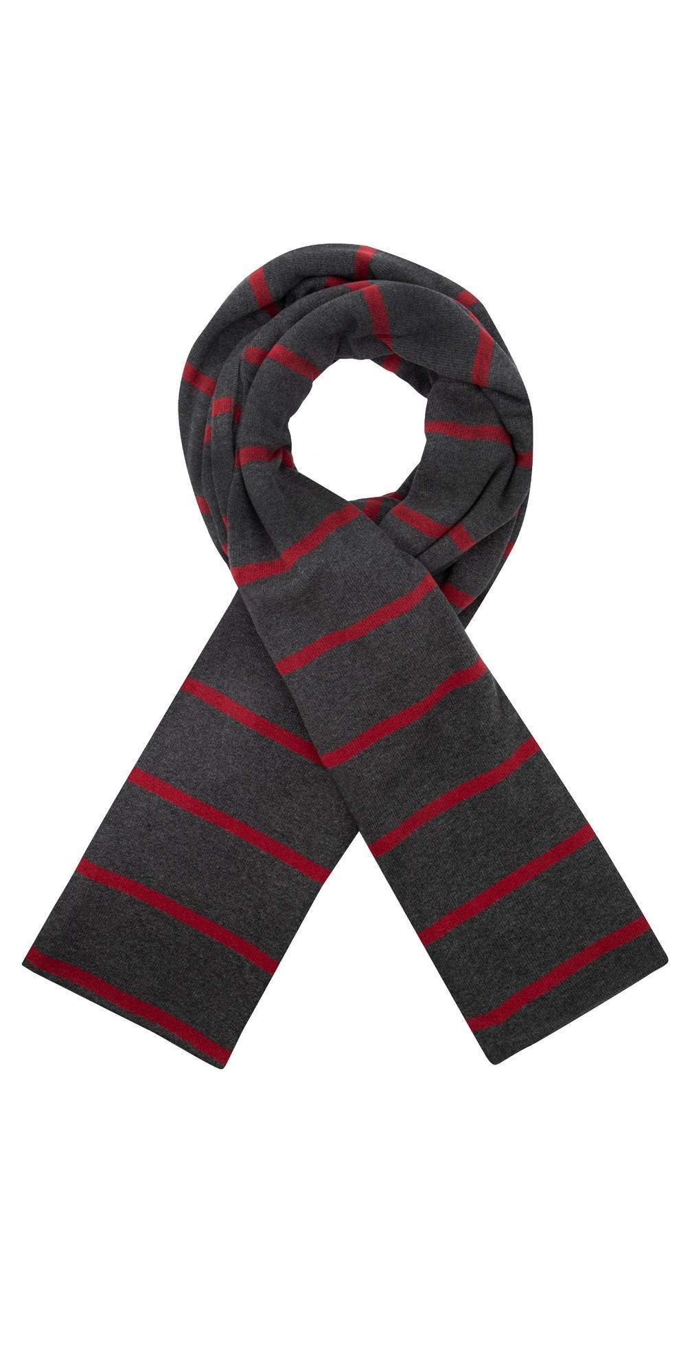 Segovia RG Wide Stripe Fleece Scarf main image