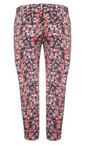 Great Plains Cupcake Forget Me Not Print Pant